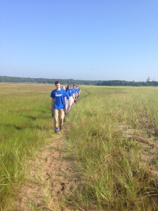 A walk to search for shorebirds.