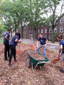 Volunteers raking mulch