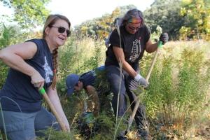 Volunteers help plant memorial oak trees at Coldwater Spring.