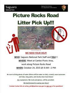 Picture Rocks Litter Flyer