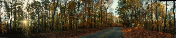 CHAT driveway