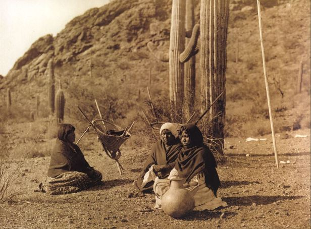208835300-Vofa_31_Three_Qahatika_woman_rest_while_harvesting_the_fruit_of_the_Saguaro_cactus_which_they_call_Hasen_1907_Edward_S._Curtis_sqs