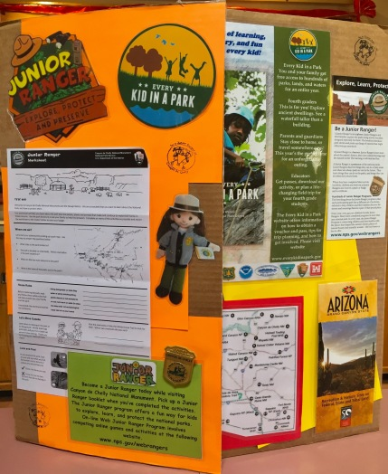 junior-ranger-board