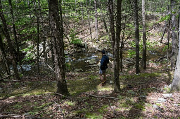 5-13-17-Gateway-Trail-May-3-74.jpg